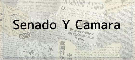 Senado Y Camara