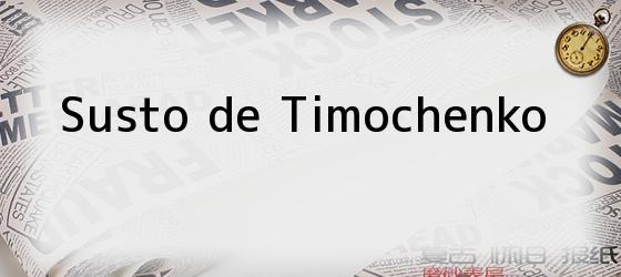 Susto de Timochenko