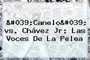 '<b>Canelo</b>' <b>vs</b>. <b>Chávez</b> Jr: Las Voces De La Pelea