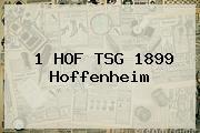 <b>1 HOF TSG 1899 Hoffenheim</b>