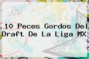10 Peces Gordos Del <b>Draft</b> De La Liga MX