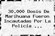 30.000 Dosis De Marihuana Fueron Incautadas Por La <b>Policía</b> <b>...</b>