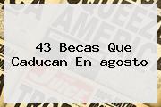 43 Becas Que Caducan En <b>agosto</b>