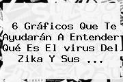 6 Gráficos Que Te Ayudarán A Entender Qué Es El <b>virus</b> Del <b>Zika</b> Y Sus <b>...</b>