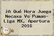 ¿A Qué Hora Juega <b>Necaxa Vs Pumas</b>? Liga MX, Apertura 2016