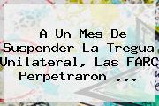 A Un Mes De Suspender La Tregua Unilateral, Las FARC Perpetraron <b>...</b>