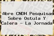 Abre CNDH Pesquisas Sobre <b>Ostula</b> Y Calera ? La Jornada