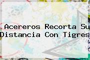 Acereros Recorta Su Distancia Con <b>Tigres</b>