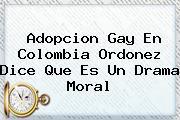 <b>Adopcion Gay</b> En Colombia Ordonez Dice Que Es Un Drama Moral