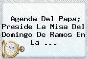 Agenda Del Papa: Preside La Misa Del <b>Domingo De Ramos</b> En La <b>...</b>