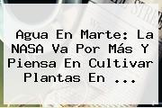 Agua En <b>Marte</b>: La NASA Va Por Más Y Piensa En Cultivar Plantas En <b>...</b>