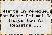 Alerta En Venezuela Por Brote Del <b>mal De Chagas</b> Que Ya Registra ...