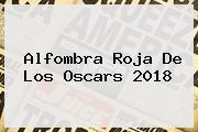 Alfombra Roja De Los <b>Oscars 2018</b>