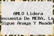 AMLO Lidera <b>encuesta</b> De MEBA, Le Sigue Anaya Y Meade