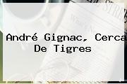 André <b>Gignac</b>, Cerca De Tigres