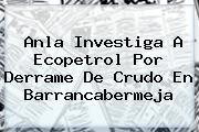 Anla Investiga A <b>Ecopetrol</b> Por Derrame De Crudo En Barrancabermeja