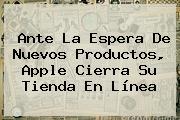 Ante La Espera De Nuevos Productos, <b>Apple</b> Cierra Su Tienda En Línea