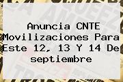 Anuncia CNTE Movilizaciones Para Este 12, <b>13</b> Y 14 De <b>septiembre</b>