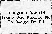 Asegura <b>Donald Trump</b> Que México No Es Amigo De EU