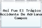 Así Fue El Trágico Accidente De <b>Adriana Campos</b>