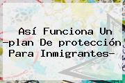 Así Funciona Un ?plan De <b>protección</b> Para Inmigrantes?