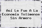 Así Le Fue A La Economía Tolimense Sin <b>Armero</b>