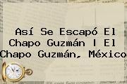 Así Se Escapó El <b>Chapo Guzmán</b>   El <b>Chapo Guzmán</b>, México