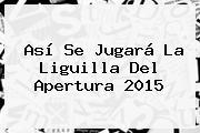 Así Se Jugará La <b>Liguilla</b> Del <b>Apertura 2015</b>