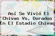 Así Se Vivió El <b>Chivas Vs</b>. <b>Dorados</b> En El Estadio Chivas