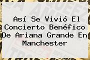 Así Se Vivió El Concierto Benéfico De <b>Ariana Grande</b> En Manchester