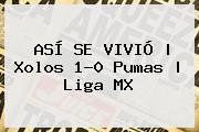 ASÍ SE VIVIÓ | <b>Xolos</b> 1-0 <b>Pumas</b> | Liga MX