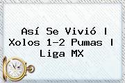 Así Se Vivió | <b>Xolos</b> 1-2 <b>Pumas</b> |<b> Liga MX