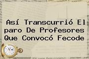 Así Transcurrió El <b>paro De Profesores</b> Que Convocó Fecode
