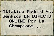 Atlético Madrid Vs. Benfica EN DIRECTO ONLINE Por La <b>Champions</b> <b>...</b>