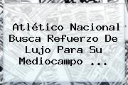 <b>Atlético Nacional</b> Busca Refuerzo De Lujo Para Su Mediocampo ...