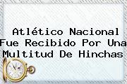 <b>Atlético Nacional</b> Fue Recibido Por Una Multitud De Hinchas