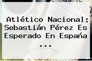 Atlético <b>Nacional</b>: Sebastián Pérez Es Esperado En España ...