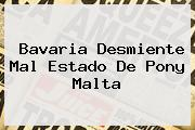 Bavaria Desmiente Mal Estado De <b>Pony Malta</b>
