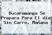 <b>Bucaramanga</b> Se Prepara Para El <b>día Sin Carro</b>, Mañana