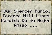 <b>Bud Spencer</b> Murió: Terence Hill Llora Pérdida De Su Mejor Amigo ...