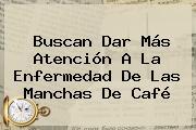 Buscan Dar Más Atención A La Enfermedad De Las Manchas De Café