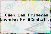 <i>Caen Las Primeras Nevadas En #Coahuila</i>
