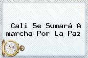 Cali Se Sumará A <b>marcha Por La Paz</b>