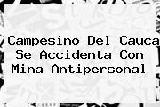 <i>Campesino Del Cauca Se Accidenta Con Mina Antipersonal</i>