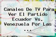 Canales De TV Para Ver El Partido <b>Ecuador Vs. Venezuela</b> Por Las ...