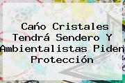 <b>Caño Cristales</b> Tendrá Sendero Y Ambientalistas Piden Protección