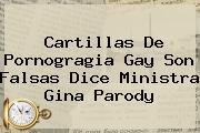 Cartillas De Pornogragia Gay Son Falsas Dice Ministra <b>Gina Parody</b>
