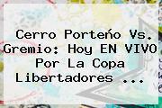 Cerro Porteño Vs. Gremio: Hoy EN VIVO Por La <b>Copa Libertadores</b> ...