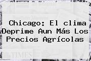 <b>Chicago</b>: El <b>clima</b> Deprime Aun Más Los Precios Agrícolas