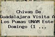 <b>Chivas</b> De <b>Guadalajara</b> Visita A Los <b>Pumas</b> UNAM Este Domingo (1 ...